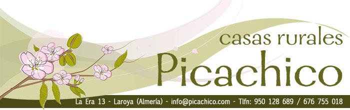 banner-picachico