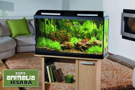 Llévate este Kit Acuario Marina Style en Animalia Jesada por sólo 99.99 euros