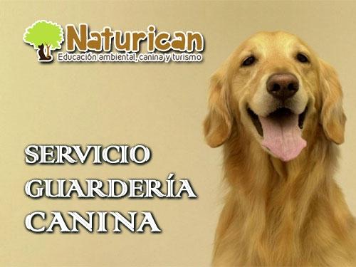 Guardería Canina Naturican: Cuidamos de tu perro desde 8€ al día* incluye comidas, paseo y juego