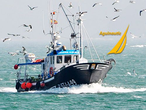 Curso profesional Marinero-Pescador con Aguinautic